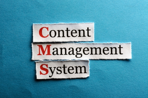 Best Content Management System for Your Online Business