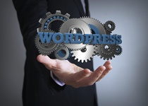 Best Practices for WordPress SEO in 2015
